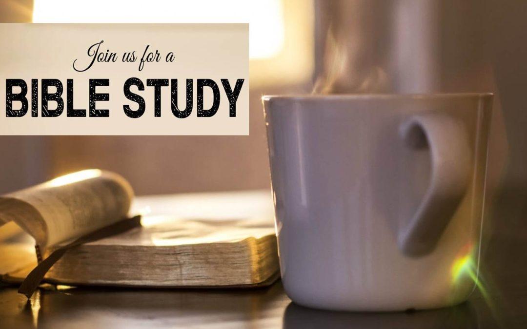 New Bible Studies
